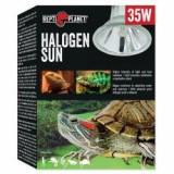 Bec REPTI PLANET Halogen Sun 35W