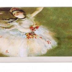 Etui ochelari Fridolin Degas