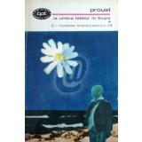 La umbra fetelor in floare, vol. 1
