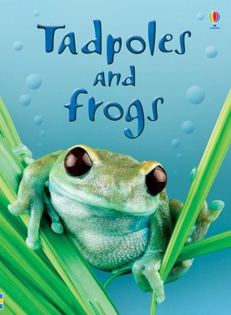 Beginners Tadpoles and Frogs - Carte Usborne (4+)