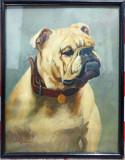 Bulldogul// ulei pe carton, Dezideriu Hoppe Suciu, Istorice, Acuarela, Altul