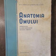 ANATOMIA OMULUI, ANGEIOLOGIE, GLANDE ENDOCRINE, SISTEMUL NERVOS - IAGNOV