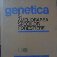 GENETICA SI AMELIORAREA SPECIILOR FORESTIERE - VICTOR STANESCU