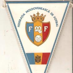 Fanion Federatia Moldoveneasca de fotbal