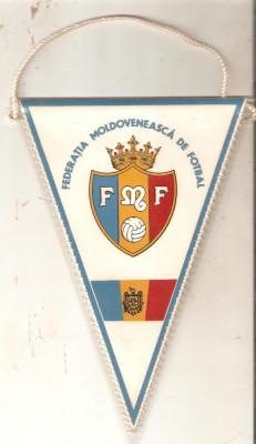 Fanion Federatia Moldoveneasca de fotbal foto