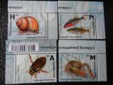 Serie timbre fauna animale nestampilate insecte pesti Belarus timbre filatelice