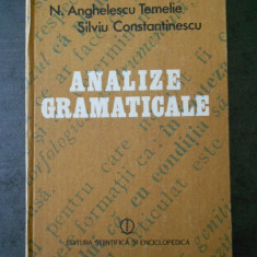 N. ANGHELESCU TEMELIE - ANALIZE GRAMATICALE