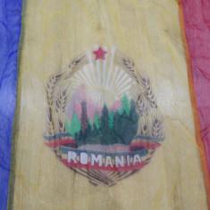 Steag - Drapel din perioada comunista - Original Republica Romania Socialista