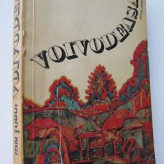 Voivodeasa - Ion Tugui