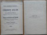 Adina Rudeanu , Carmen Sylva si caritatea  , Samitca , Craiova , 1907