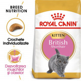 Royal Canin British Shorthair Kitten 400 g
