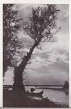 bnk cp Delta Dunarii - Amurg la Mila 23 - circulata