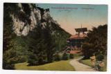 Baile Herculane parcul Szecsenyi stampila rosie  1915 comisia politia Timisoara, Circulata, Printata