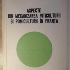 ASPECTE DIN MECANIZAREA VITICULTURII SI POMICULTURII IN FRANTA-I. SULEA, C. RUXANDU, S. STANESCU