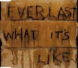CD Everlast – What It's Like , original