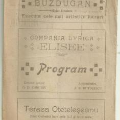 Program interbelic COMPANIA LIRICA ELISEE