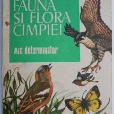 Fauna si flora campiei - Ion Radulescu, Valeria Voican
