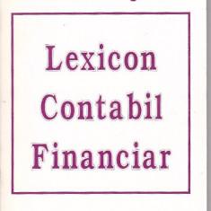 ION AGACHE - LEXICON CONTABIL FINANCIAR