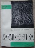 C. Daicoviciu / SARMIZEGETUSA - Cetățile și așezările dacice din Munții Orastiei