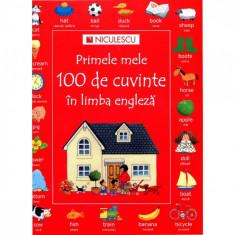 Primele mele 100 de cuvinte ?n limba engleza