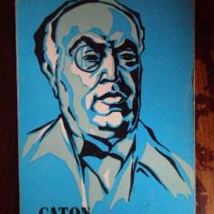 Caton Theodorianu - Stelian Cinca ,300223