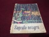 ROBERT LOUIS STEVENSON - SAGEATA NEAGRA