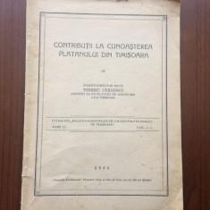 contributii la cunoasterea platanului din timisoara banat tiberiu cernescu 1944