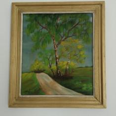 Tablou vechi ulei - Mesteceni - semnat Tompi (6), Arbori, Altul