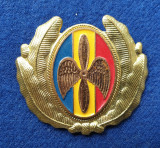Insigna Militara Ofiter AVIATIE - PILOT - AVIATOR - Coifura insemn cascheta