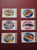 RWANDA, FISH - 6 VALORI MNH, Nestampilat