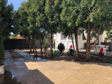 Vand RESEDINTA (2 case in curte) zona Lucian Blaga OMV, 11 ari, garaj, mobilate