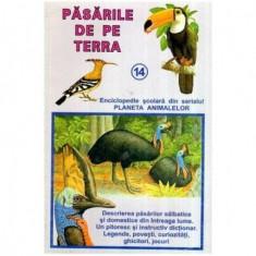 Pasarile de pe Terra - Enciclopedie scolara din serialul Planeta Animalelor