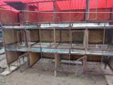 Cusca iepuri 12 compartimente