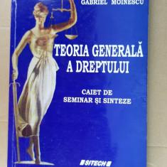 TEORIA GENERALA A DREPTULUI , CAIET DE SEMINAR SI SINTEZE  VOICU. MOINESCU