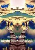 Intre doua drumuri | Silvia Budescu