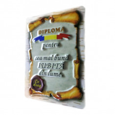"""DIPLOMA MAGNET """"CEA MAI BUNA IUBITA DIN LUME"""""""
