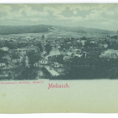 5076 - MEDIAS, Sibiu, Panorama, Litho, Romania - old postcard - unused