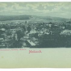 5076 - MEDIAS, Sibiu, Panorama, Litho, Romania - old postcard - unused