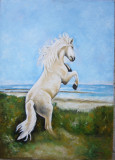 Tablou cal alb semnat Cimpoesu.