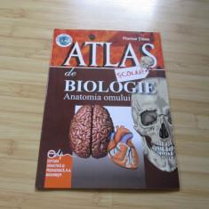 FLORICA TIBEA--ATLAS DE BIOLOGIE - ANATOMIA OMULUI