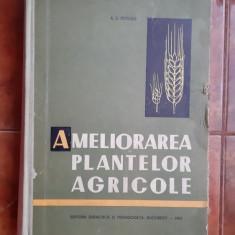 Ameliorarea Plantelor Agricole - POTLOG