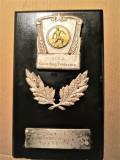 Placheta, Perioada Comunista, Timisoara 1959: UCFS - Activitate in Sport, Fotbal