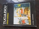 Tuculescu - Calin davidescu - Scrisul romanesc Aj
