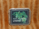 Cumpara ieftin Card CF Kingston 4Gb 133X - Elite Pro + cutiuta de transport