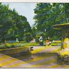 bnk cp Buzias - Vedere din parc - circulata -